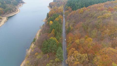 Drone follows speeding car on asphalt road near lake shore Live Action