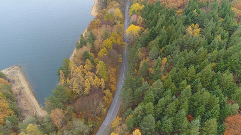 Aerial view of scenic autumn landscape of mixed forest near big lake Live Action