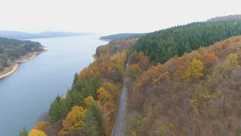 Aerial view of beautiful mixed forest in autumn colors. Asphalt road crossing Live Action