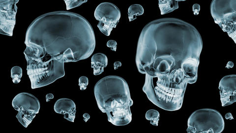 Skulls X-Ray spinning. Loop. 3D animation. 4K Videos animados