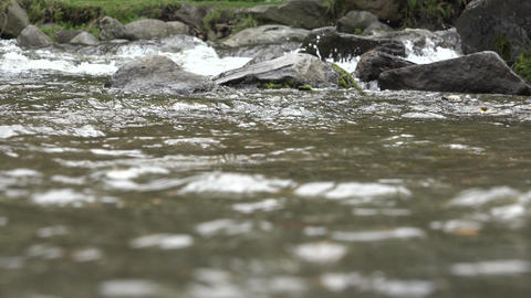 Flowing Current of River Footage