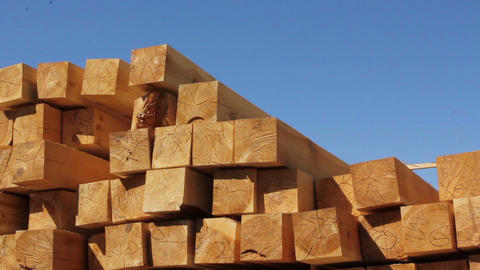 Wood chips stacked in construction yard pan/tilt Footage