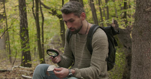 Portrait of adult Caucasian man looking at tree bark piece through magnifying Footage