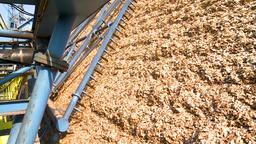 Production And Drying Of Wood Chips And Sawdust. Paper Production.