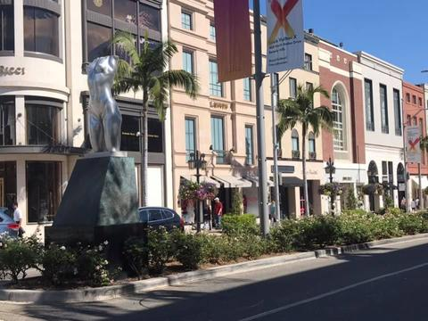Rodeo Drive Photo