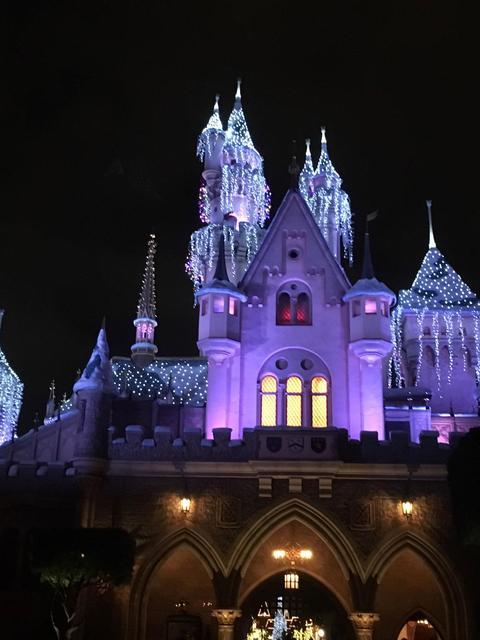 Holiday at the magic kingdom Photo