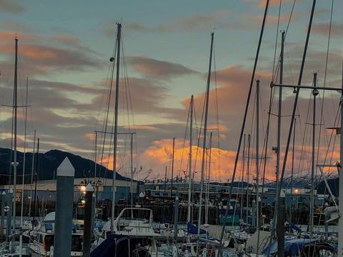 Harbor sunset フォト