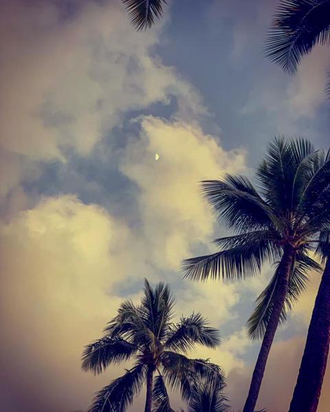 Hawaii views Photo