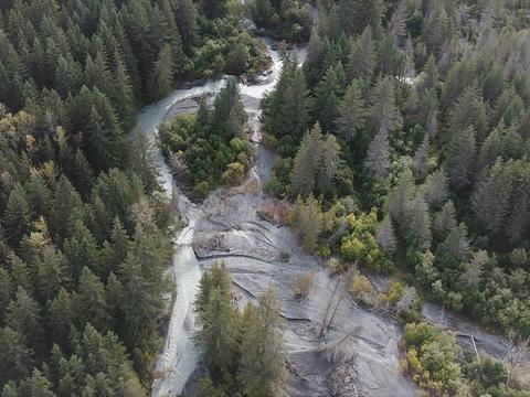 Wild river Photo