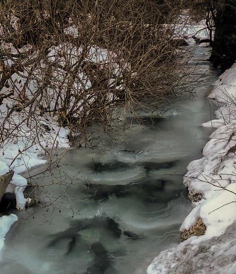 Winter stream フォト