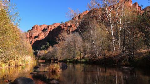 Oak Creek in Sedona Arizona GIF