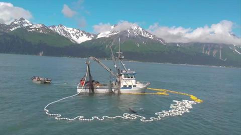 Summer salmon fishing Fotografía