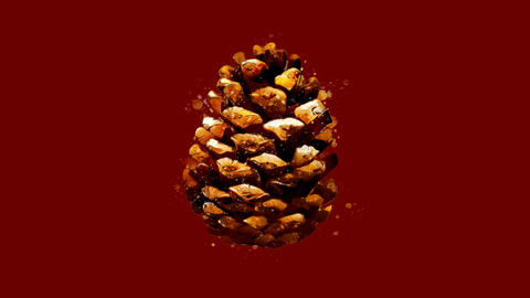 Watercolor Christmas tree decoration - brown pine cone, on the alpha channel Animation
