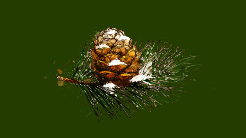 Watercolor Christmas tree decoration - fir twig and cone, on the alpha channel CG動画