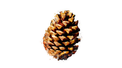 Watercolor Christmas tree decoration - brown fir cone, on the alpha channel CG動画