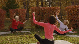 Women group meditating on yoga practice in autumn park. Female yoga on outdoor Footage