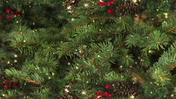 Looping Holiday Tree Motion Background Archivo
