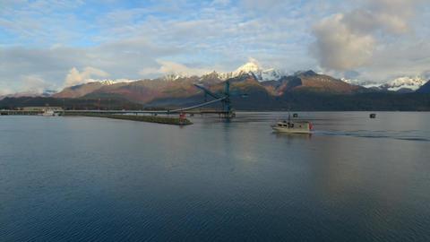 Fall fisning in Alaska Live Action