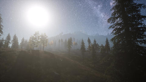 Milky Way stars with moonlight above pine trees forest ビデオ