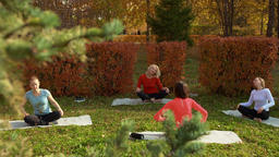 High angle view of women relaxing during zen meditation in park Footage