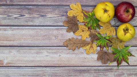 Autumnal decoration of apples, leaves and pine cones appear on wooden table - Stop motion animation Animation