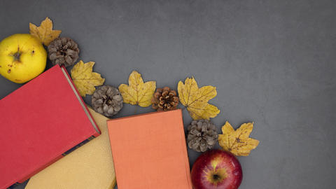 Red, orange and yellow books disappear from grey background with autumnal decoration - Stop motion Animation