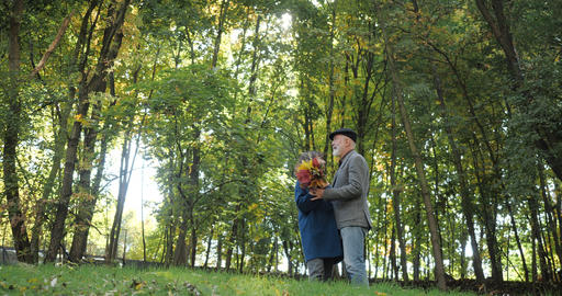 Happy elderly couple dancing in the autumn in the park among the trees - slow GIF