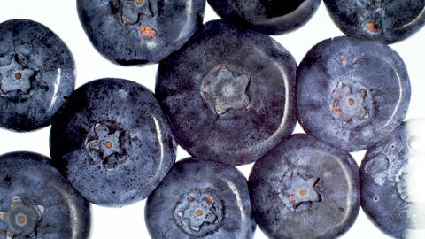 4k macro video of crushing and squeezing lots of blueberries on white background Archivo