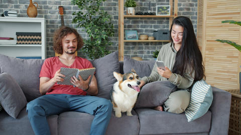 Girl using smartphone while guy reading book at home on couch with corgi puppy Archivo