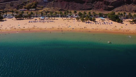 View from the height of the golden sand, palm trees, sun loungers Live Action