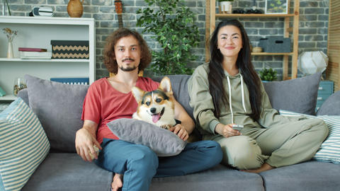 Cheerful couple watching TV at home and stroking corgi doggy in apartment Footage