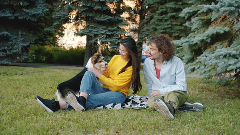 Happy couple relaxing in park caressing corgi puppy sitting on lawn together Archivo
