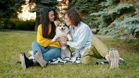 Slow motion of man and woman kissing corgi dog sitting on lawn in park Archivo