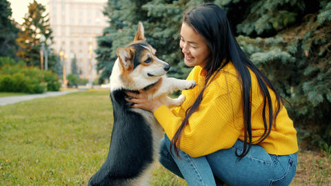 Slow motion of Asian girl hugging and kissing corgi dog outdoors in city park Archivo