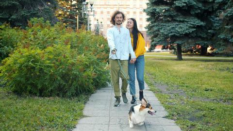 Happy multi-ethnic couple walking with corgi dog kissing in urban park Archivo