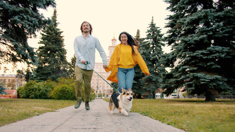 Dolly shot of man, woman and dog corgi breed running outdoors in city park Archivo