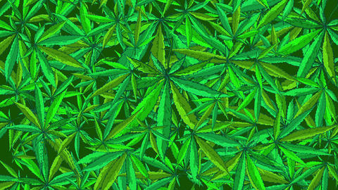 Cannabis Vector BG Animation