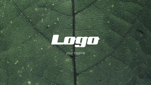 Logo - Photo Intro // Premiere Pro Premiere Pro Template