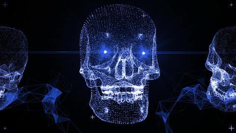 Techno Skull VJ-Loops 9 In 1 0