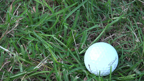 Golf Ball Close Up Footage