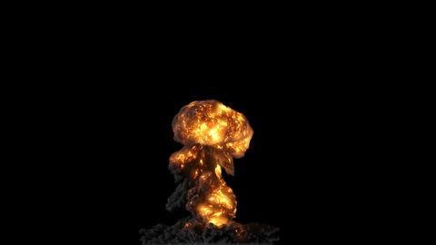 bomb Explosion with alpha matte Videos animados