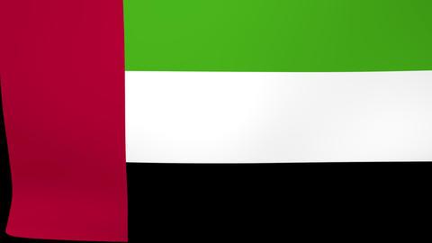 Flag of United Arab Emirates Falling - Displayed - Alpha Live Action