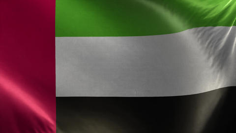Flag of United Arab Emirates Loop Live Action