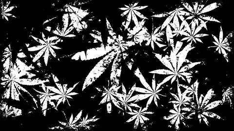 Marijuana Grunge Overlay with Alpha-Channel Animation