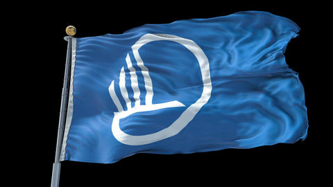 Nordic Council animated flag pack in 3D and isolated background Animation