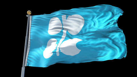 OPEC animated flag pack in 3D and isolated background Animation