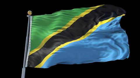 Tanzania animated flag pack in 3D and isolated background Animation