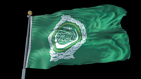 Arab League animated flag pack in 3D and isolated background Animation