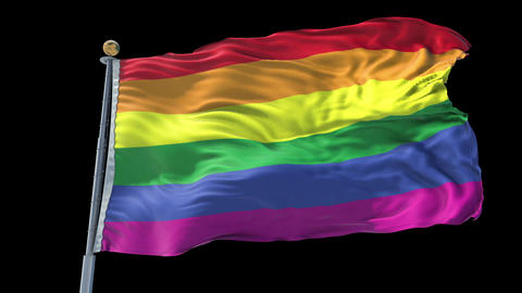 Gay Pride animated flag pack in 3D and isolated background Animation