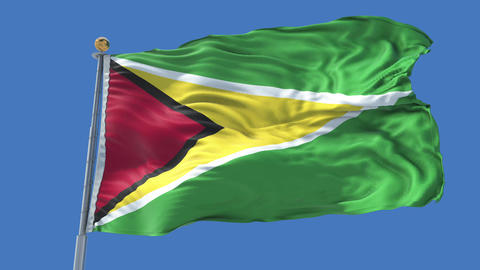 Guyana animated flag pack in 3D and isolated background Animation